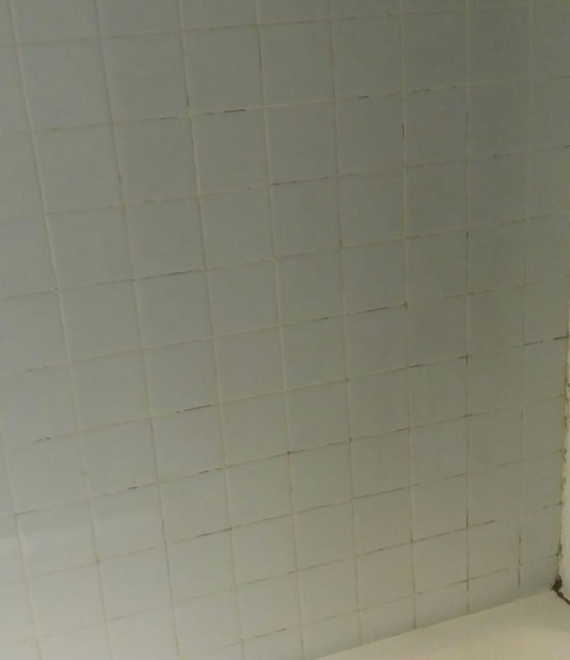 azulejos-repaban
